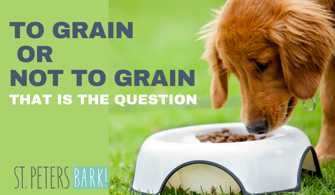 To Grain or Not To Grain – That is the Question.