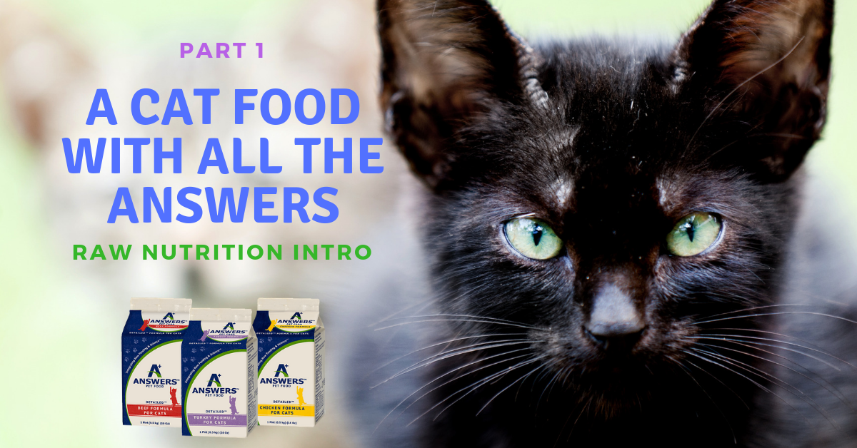 Part 1: A Cat Food With All The Answers: Raw Nutrition Intro