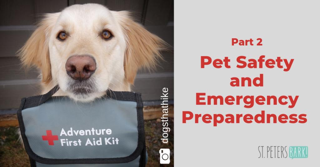 first aid blog