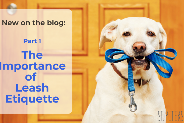 The Importance of Leash Etiquette