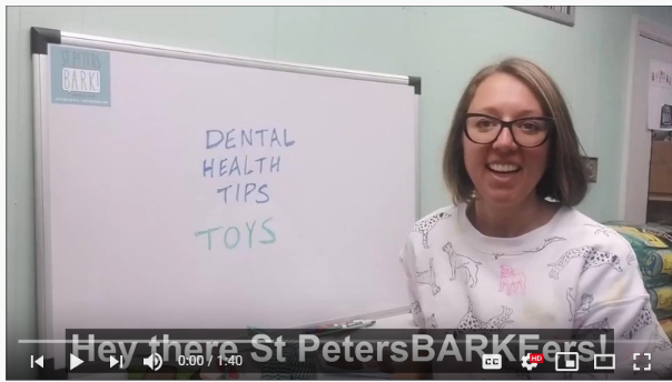 Dental Health Tip #2 – Toys
